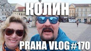 видео В Украине неожиданно зацвела вишня