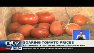 Acute tomato shortage sends prices through the roof