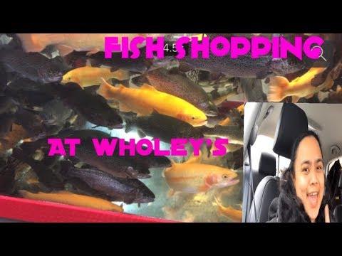 FISH SHOPPING AT WHOLEY's PITTSBURGH PENNSYLVANIA