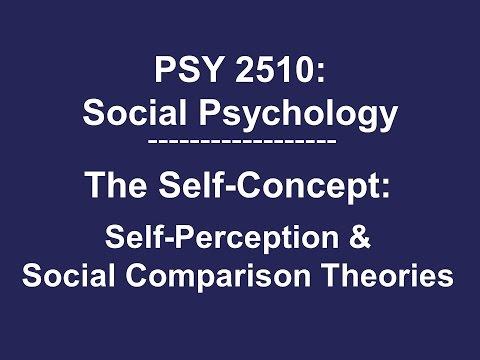Self-Perception & Social Comparison