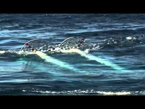 Anadarko: Ocean Current Power Generation