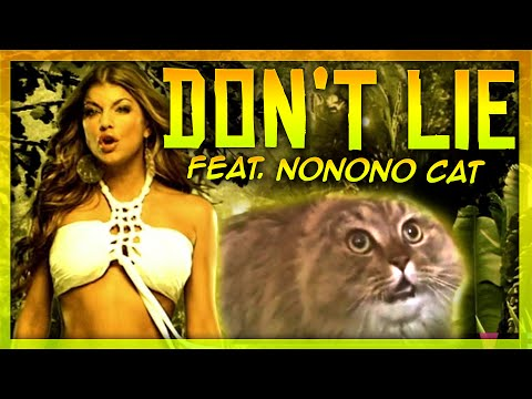 The Black Eyed Peas - Don't Lie - NONONO Cat Cover!!