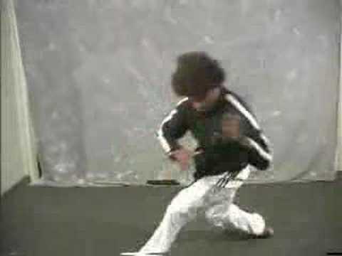 Kung fu pro casting