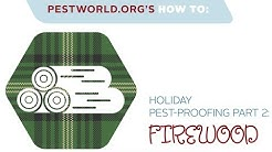 Holiday Pest-Proofing Part 2: Firewood