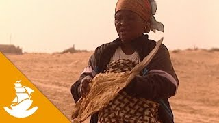 Mauritanian women and the market of fish (Part 2/2)