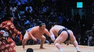 平成28年大相撲九州場所 11月22日 満員御礼 Sumo -Kyushu Basho.