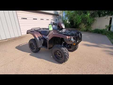 2020 Honda Foreman Rubicon at Bartlesville Cycle Sports in Bartlesville, OK