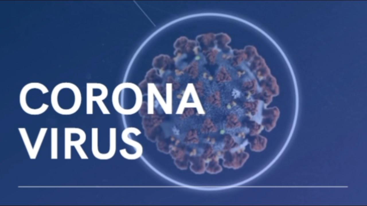 Corona Virus Report 2020 - കൊറോണ വൈറസ് എങ്ങനെ ഉണ്ടായി | കൊറോണ  വൈറസ് എങ്ങനെ പകരുന്നു