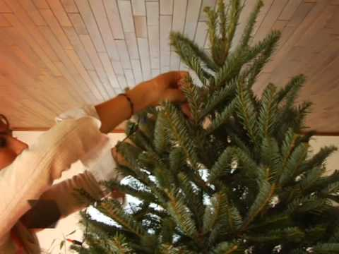 how to string christmas tree lights youtube - How To String Lights On A Christmas Tree