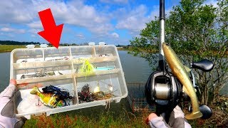 What's in My Bass Fishing Tackle Box? (Tips & Techniques)