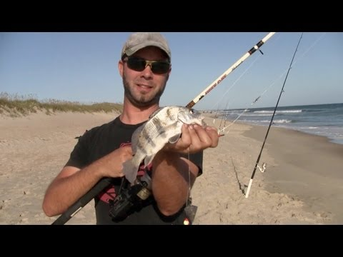 Outer banks surf fishing in duck doovi for Outer banks surf fishing tips