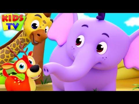 Children's Nursery Rhymes & Kids Songs | Cartoon Videos for Babies