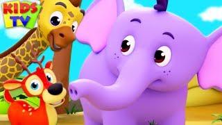 Children's Nursery Rhymes & Kids Songs   Cartoon Videos for Babies