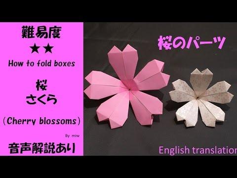 折り 折り紙 折り紙 桜 作り方 : popmatx.com