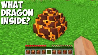 Which DRAGON will HATCH from MAGMA EGG in Minecraft ? WHAT DRAGON INSIDE ?