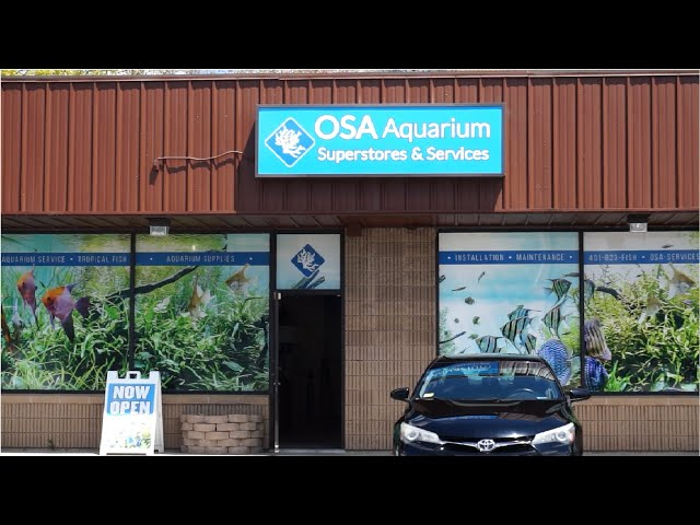 OSA Aquarium Store  Seekonk Ma