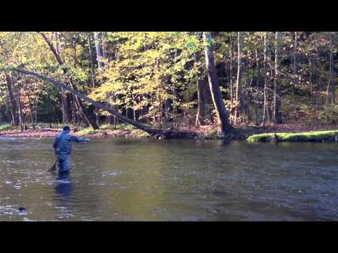 Mohican State Park  In Ohio Fly  Fishing The Clear Fork RIver