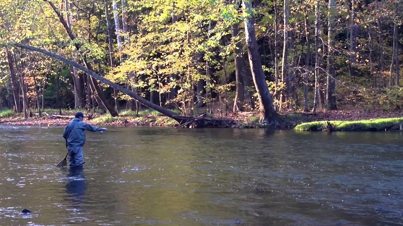 Mohican state park in ohio fly fishing the clear fork for Fly fishing ohio