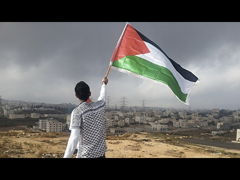 Survey Shows Support Growing For Palestinians Among Canadians (1/2)