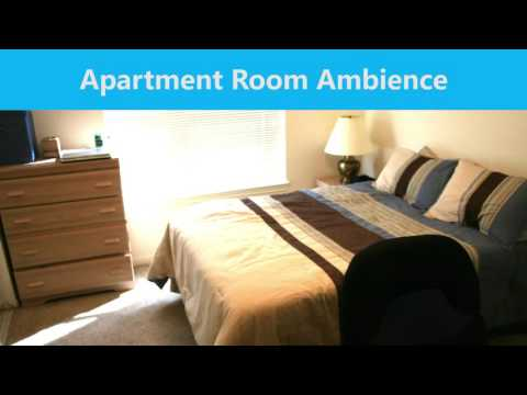 1 HOUR - Apartment Room Ambience (CC BY 4.0)