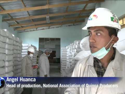 Quinoa brings hard cash to Bolivia