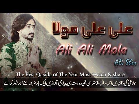 Qasida - Ali Ali a.s Mola Ali Ali a.s - Ali Sher - 2018