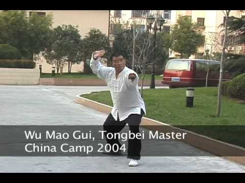 Wu Mao Gui Tong Bei Form China Camp 2004 see www.s...