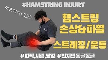 (허벅지,엉덩이,종아리 통증) 햄스트링 손상&파열에 필수적인 스트레칭/운동!(4 Simple Steps to HEAL Hamstring Strain FAST!!)