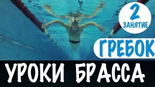 КАЖДЫЙ БРАССИСТ ДОЛЖЕН УМЕТЬ ЭТО ДЕЛАТЬ. ГРЕБОК РУКАМИ. УРОКИ БРАССА. УРОК 2 @Swimmate.ru