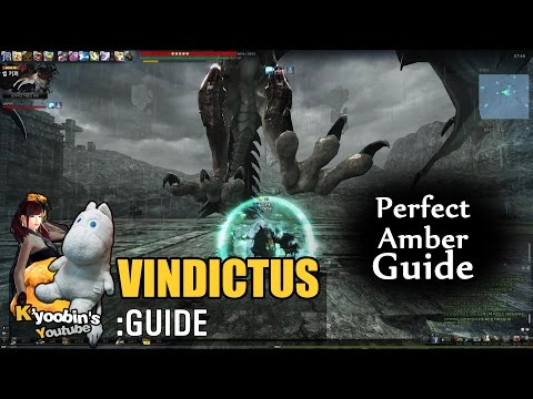 [Vindictus] Perfect Amber Guide | Staff Evie