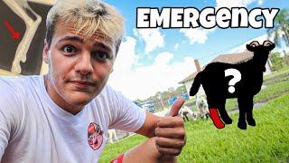 My Pet mini GOAT BROKE his LEG?!