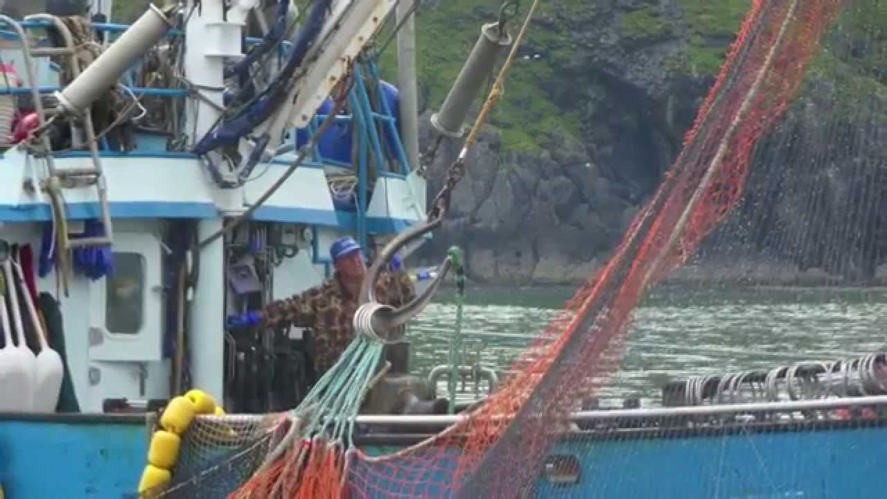 Deadliest catch salmon commercial fishing youtube for Alaska out of state fishing license
