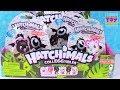 Hatchimals Season 2 Target Exclusive Bearakeet CollEGGtibles Toy Review | PSToyReviews