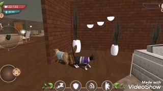 Cat sim клип - Я хочу к тебе😺😺😺