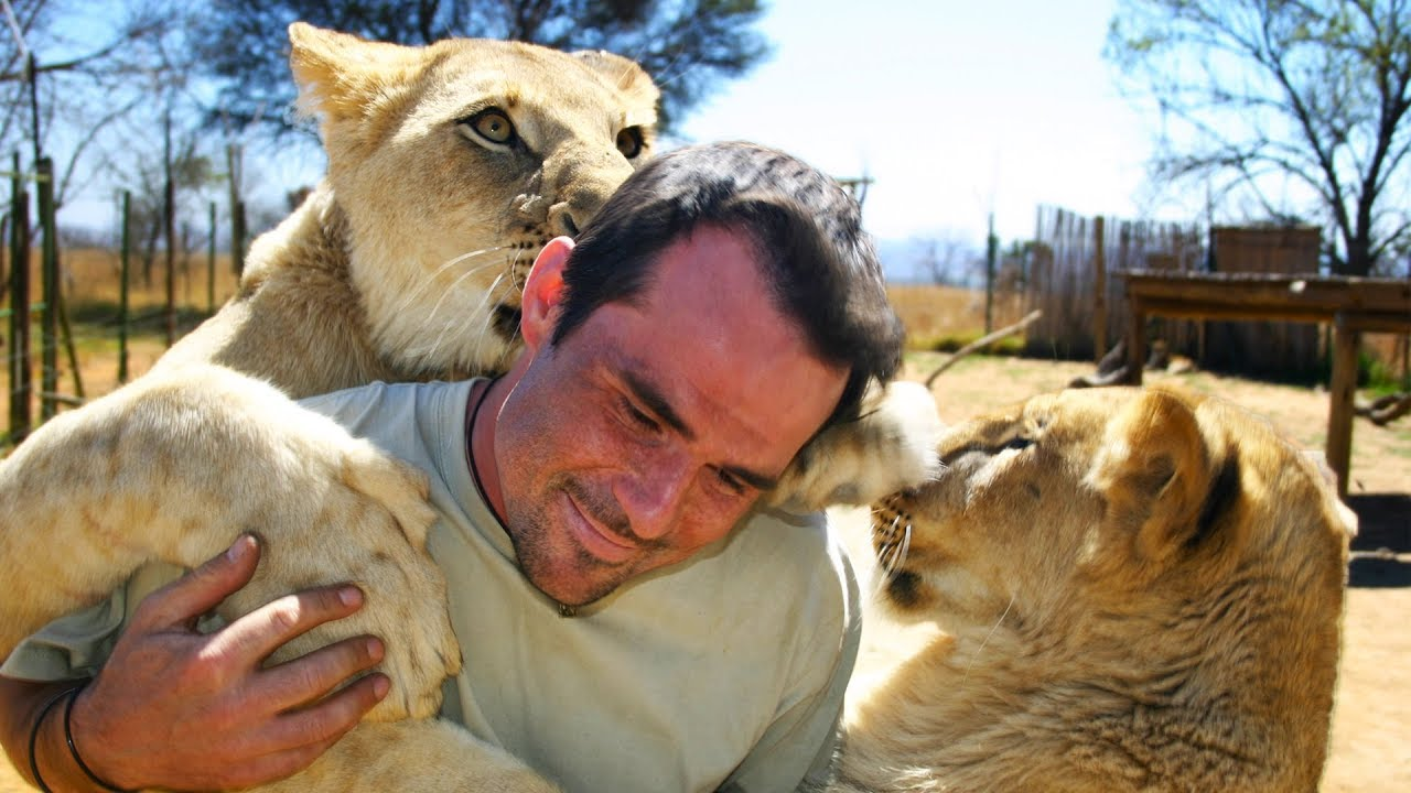 special-announcement-the-lion-whisperer