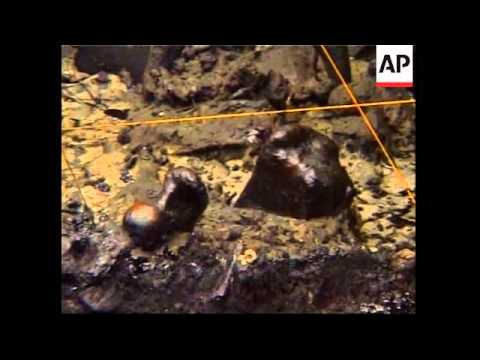 Scientists unearth 40,000 yr old remains