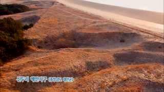 [뉴스광장 영상] 신두리 해안사구
