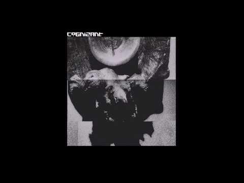 Cognizant - S/T (2016) Full Album (Technical/Deathgrind)