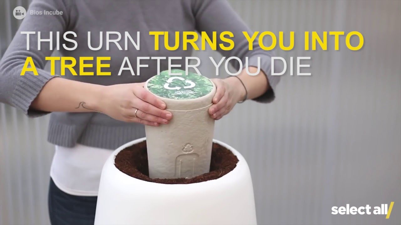 this urn turns you