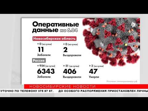 Коронавирус в Новосибирске: сводка на 6 апреля