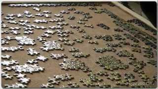 The Venice Project. Ravensburger Puzzle 3000.