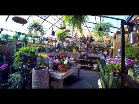 Reynolds Garden Shop Tour