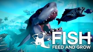 Fish Feed and Grow | Jucam cu pesti noi