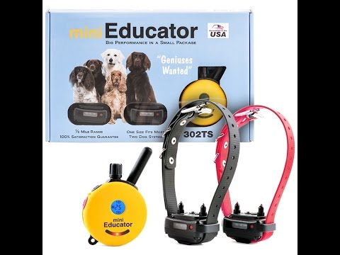 2- Dog System Mini Educator Ecollar Technologies 302