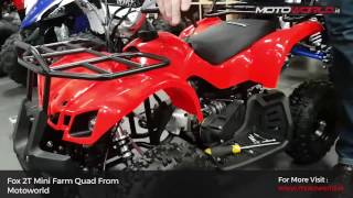 Childrens 2 Stroke Farm Quad - FOX 2T ATV  Motoworld Ireland