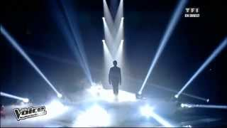 The Voice 2013 - Yoann Freget - Vole