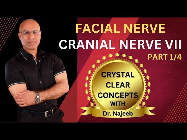 Dr  Najeeb: Neuroanatomy – Facial Nerve 1/4 – USMLE Step 1