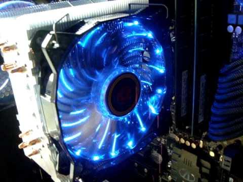 Вентилятор 120x120x25 lepa casino 1c lpvc1c12p-bl почему не работает на телефоне казино гранд кристалл