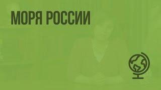 Моря России. Видеоурок по географии 8 класс