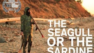 "★ A Spearfishing Story ""the Seagull Or The Sardine"" - Short Film Anthony Dooley - Uncharted Studio"